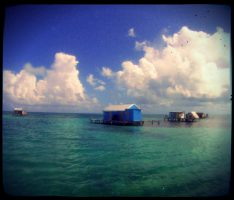 Dive and Adventure Mahahual Banco Chinchorro