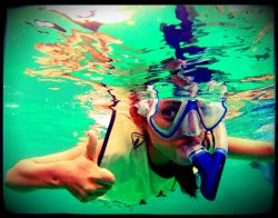 Dive and Adventure Mahahual Caribe Snorkel Tour