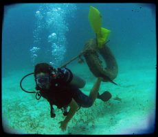 Dive and Adventure Mahahual Diving