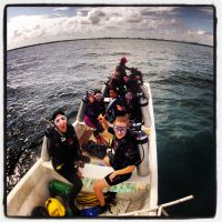 Dive and Adventure Mahahual Tour de Buceo